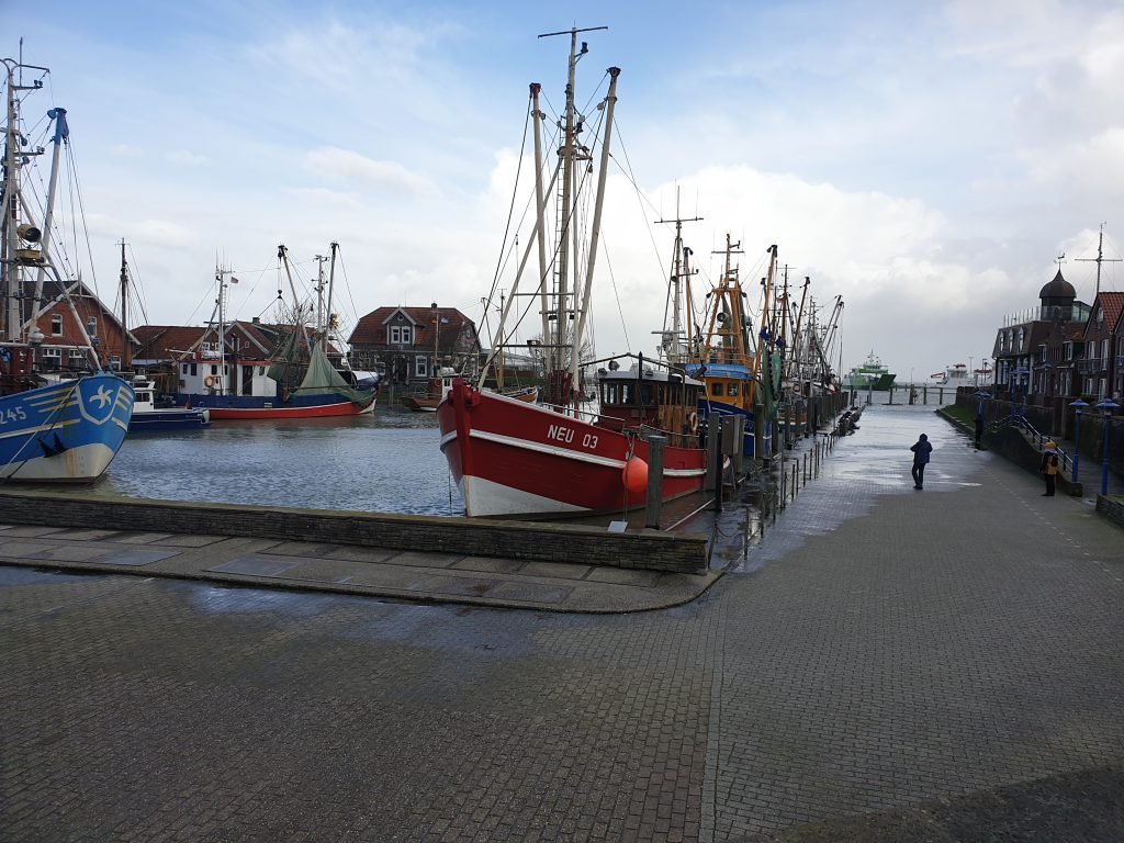Das Wasser steigt am Osthafen leicht über die Hafenkante