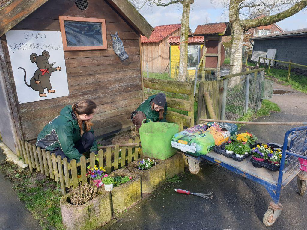 Stefanie Runge und Maja Becklönne bepflanzen ein Blumenbeet