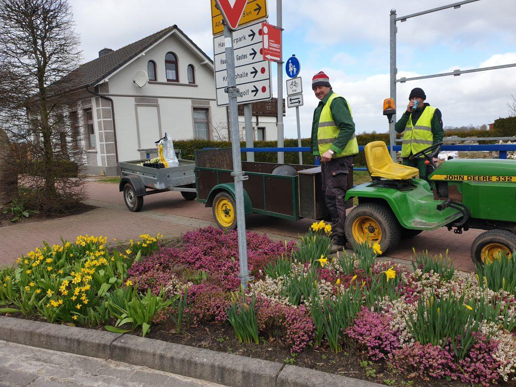 Heiko Hohaus und Johann Decker bepflanzen die Beete an der großen Kreuzung