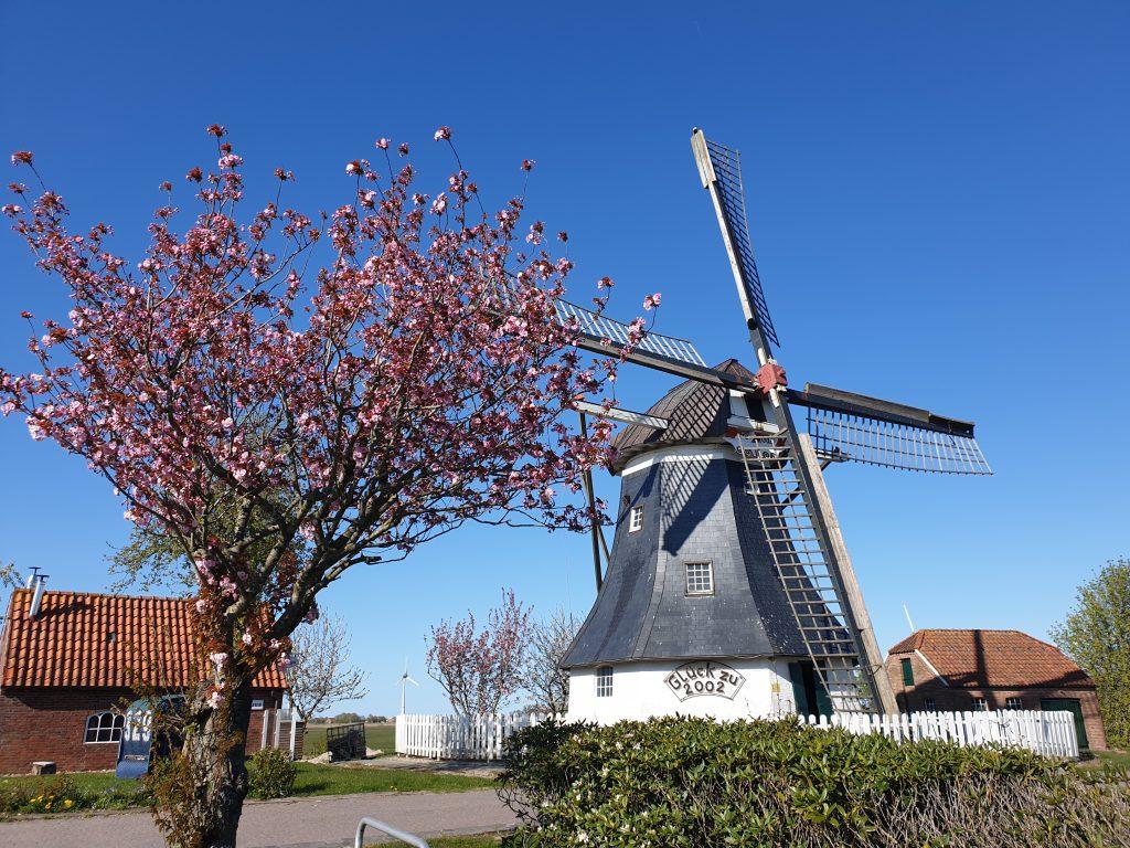 Die Mühle bei strahlendem Sonnenschein
