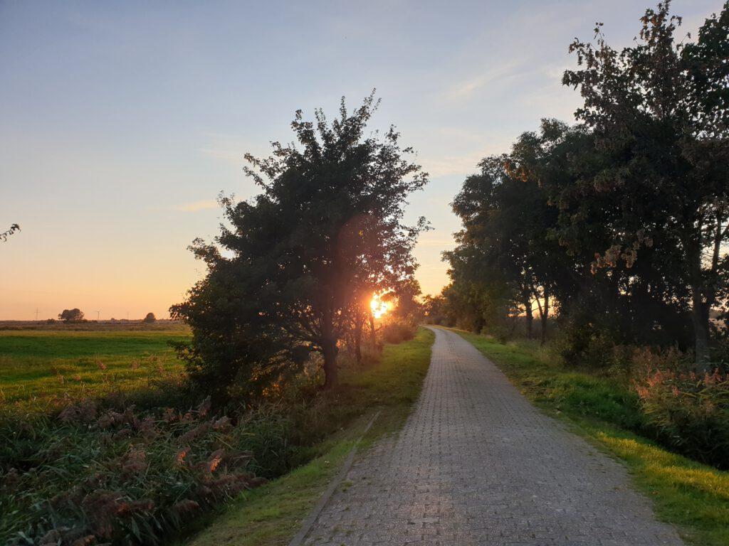 Auch am Kleiweg kann man einen wunderschönen Sonnenuntergang beobachten