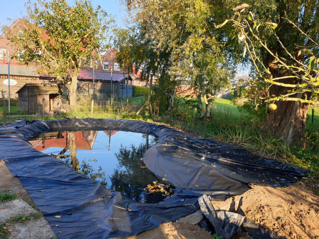 Der Teich ist fast voll