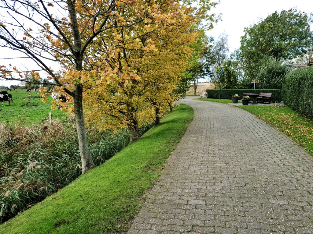 farbenfrohes Laub am Ortsausgang Kleiweg