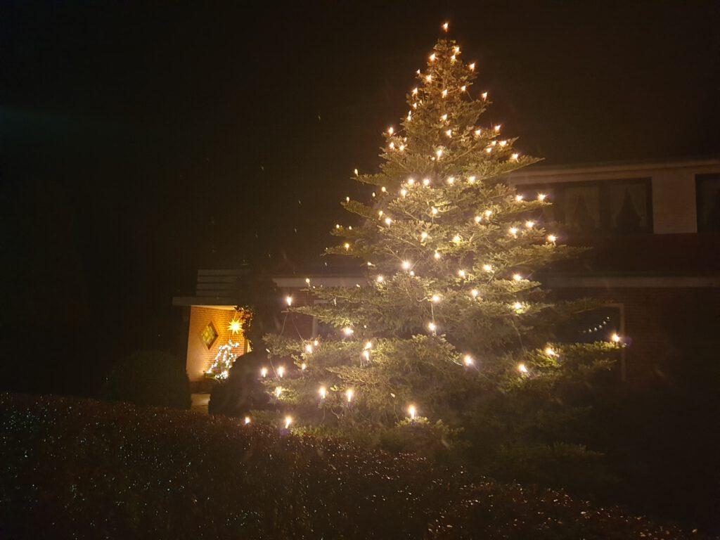 Der große Weihnachtsbaum steht bei Rittbergs