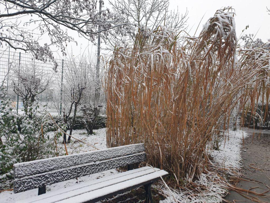 Am Ententeich im Haustierpark ist es jetzt winterlich idyllisch
