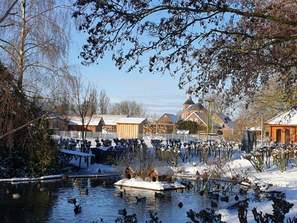 Blick über den Teich hin zu St.-Nicolai