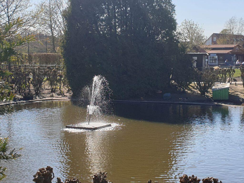 Auch der Springbrunnen im Ententeich sprudelt wieder