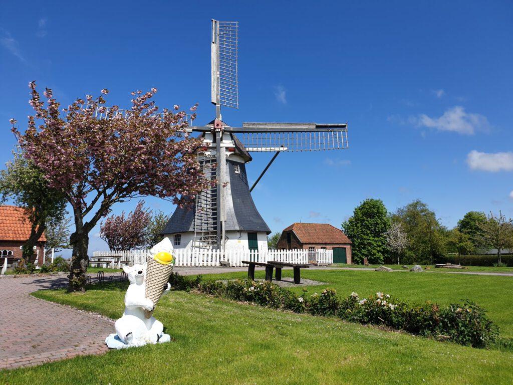 Die Mühle strahlt in der Sonne, das erste Eis lockt auch