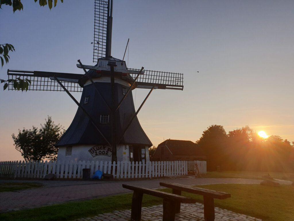 Die Sonne geht hinter den Bäumen auf und lässt ihr Licht die Mühle ganz besonders erscheinen