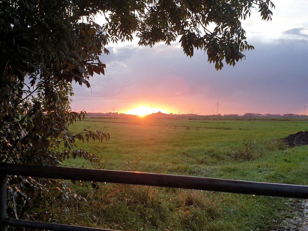 der heutige Sonnenaufgang verspricht wieder schöneres Wetter